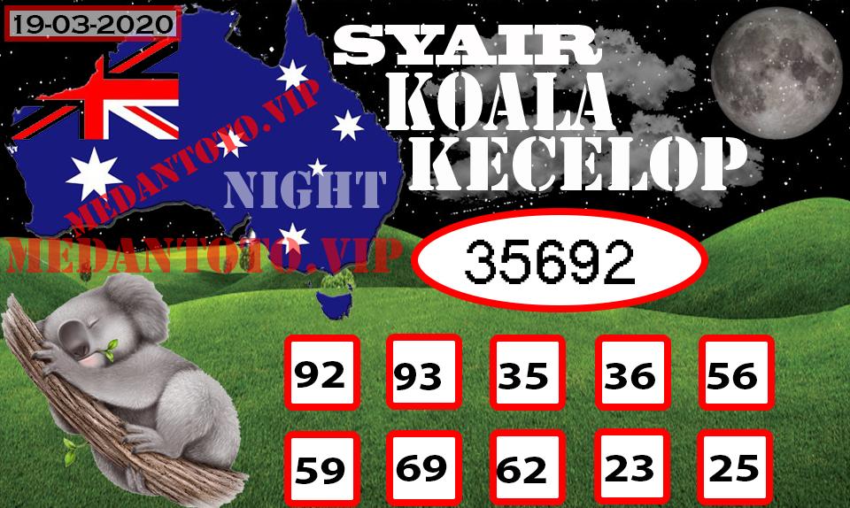 SYAIR KOALA KECELOP 19.jpg (960×574)