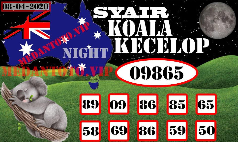 SYAIR KOALA KECELOP 08Recovered.jpg (960×574)