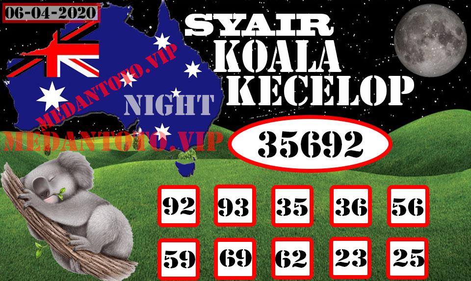 SYAIR KOALA KECELOP (6)-Recovered.jpg (960×574)